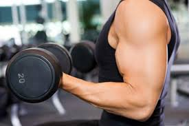 Banish Fat with Weight Training
