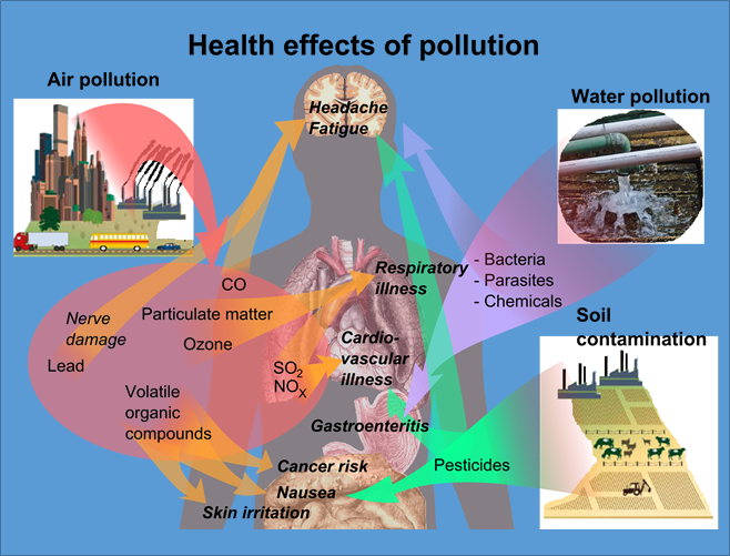the effects of pollution on our water
